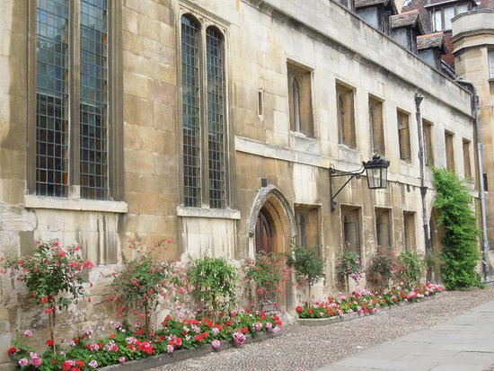Pembroke College: notice the flowers