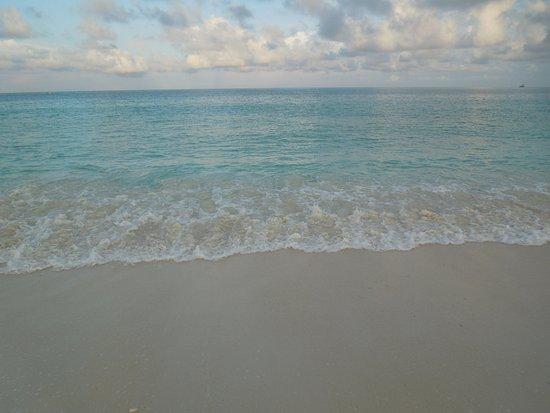 Bucuti & Tara Beach Resort Aruba: Soothing surf
