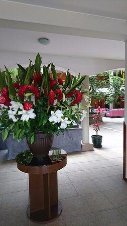 Eco Inn Cusco: Welcoming Lobby