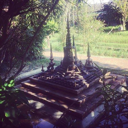 Saraphi, Thailand: photo3.jpg