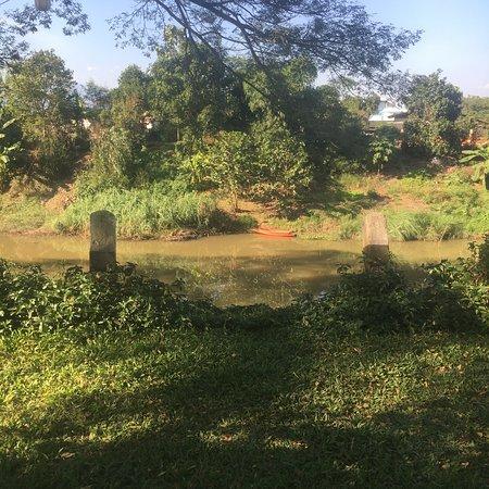 Saraphi, Thailand: photo5.jpg