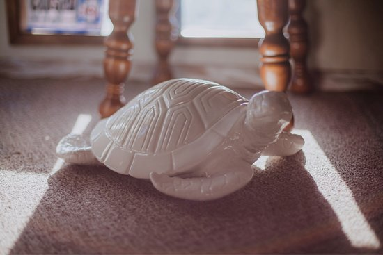 Tranquil Turtle Massage, LLC