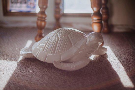 Tranquil Turtle Massage, LLC