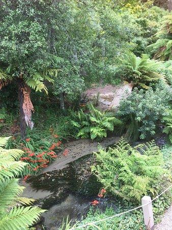 BEST WESTERN Braeside Rotorua: photo0.jpg