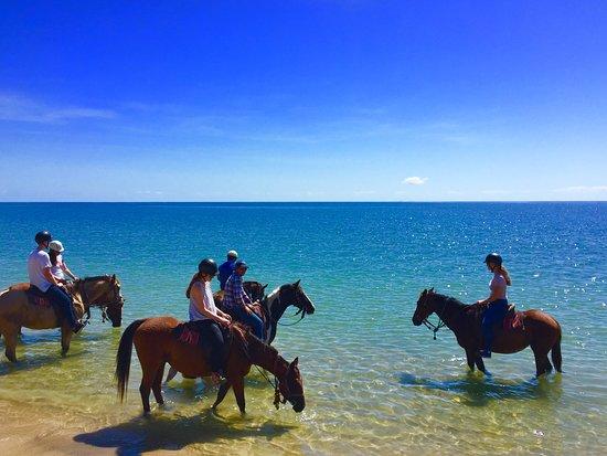 Ride the Beach Adventures