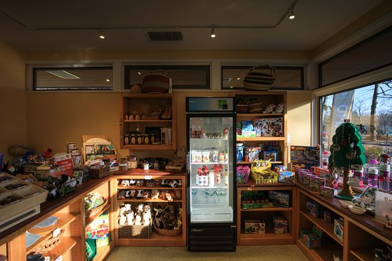 Stamford Museum & Nature Center: Gift Shop