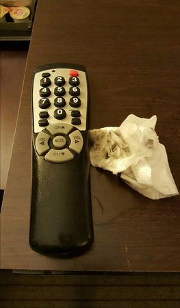 DoubleTree by Hilton - Washington DC - Crystal City: filthy remote