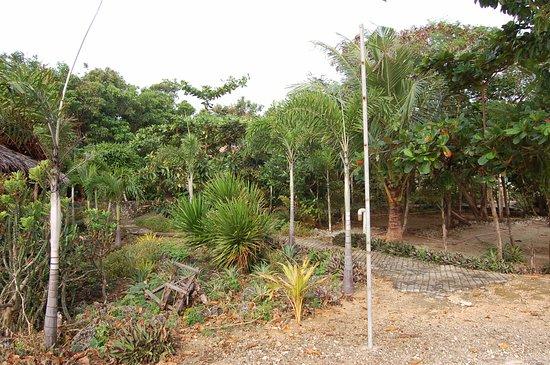 Bantayan Island Nature Park And Resort Bantayan Cebu Philippines