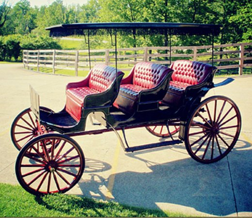 Arcadia, MO : Schedule a romantic Horse and Carriage Ride!