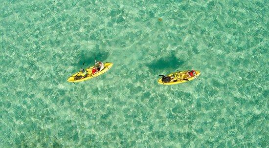 Lisa's Kayaking, Bike and SUP Rentals