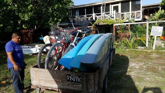 6418497 Lisa S Kayaking Bike And Sup Rentals San Pedro All