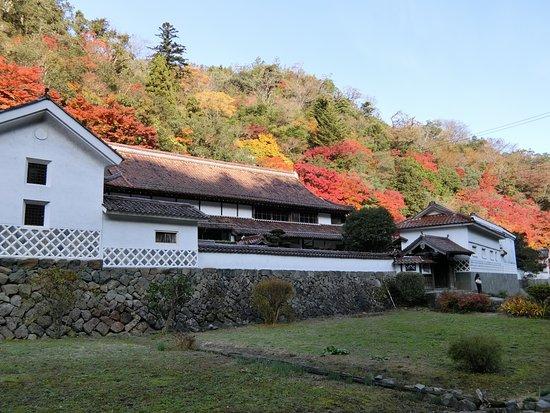 Tsuwano-cho, Nhật Bản: 堀家邸宅全景