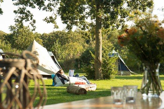 West-Terschelling, Niederlande: Bijzondere zakelijke events op de Wadden
