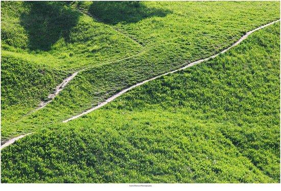 Talsi Castle Mound