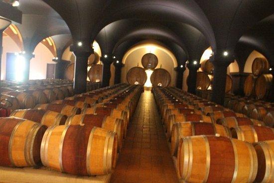 Casa Sant'Orsola - Fratelli Martini Secondo Luigi