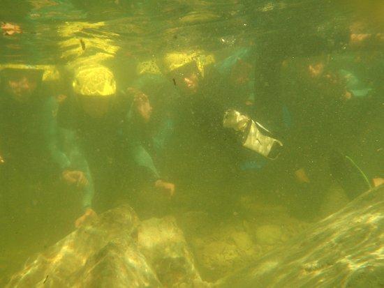 Caudies de Fenouilledes, France: Galamus, sous l'eau !