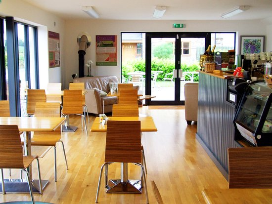 Church Stoke, UK: Enjoy lunch and a glass of wine in the wine cafe