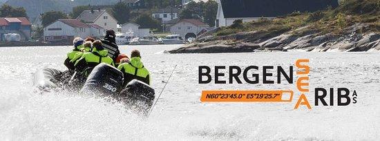 Hordaland, Norvegia: getlstd_property_photo