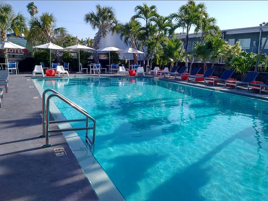 Blue Marlin Motel: The large heated pool is also the breakfast area.