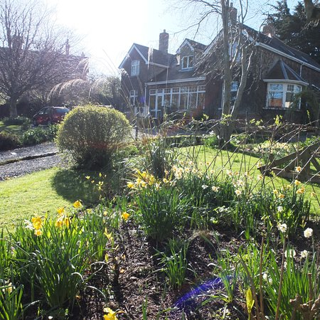 Dalkey, Irlandia: The Garden in Spring
