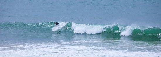 Surfwecan