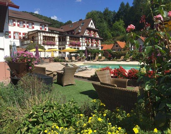 Hôtel Restaurant Au Cheval Blanc : jardin vue sur la piscine