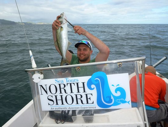 North Shore Sea Tours
