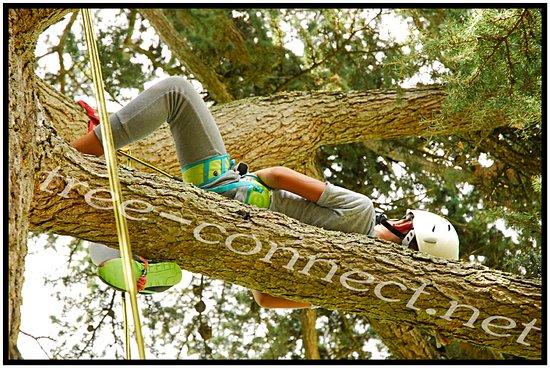 Saint-Leon-sur-Vezere, France: allongé sur la branche
