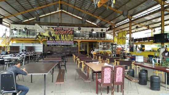 Agro Tawon Wisata Petik Madu