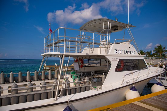 Reef Divers is at Cayman Brac Beach Resort, Little Cayman Beach Resort & Cobalt Coast Grand Caym