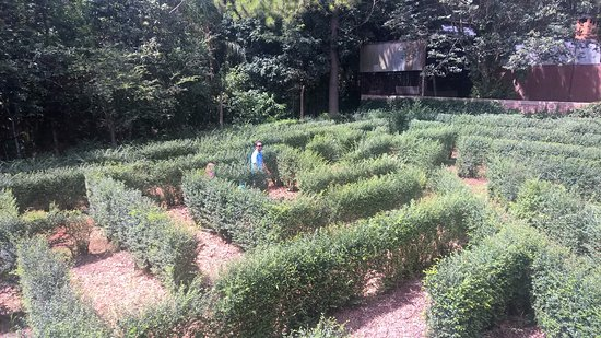 Montecarlo, Αργεντινή: labirinto
