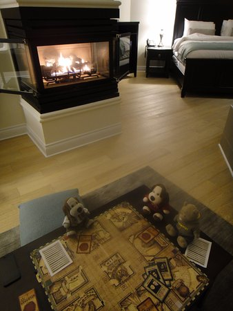 Malahat, Canadá: We brought the Harry Potter Clue Game and cards cuz we couldn't see the TV.