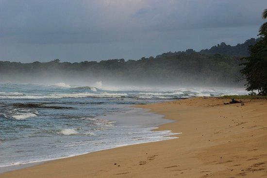 Punta Uva, Costa Rica: Волны