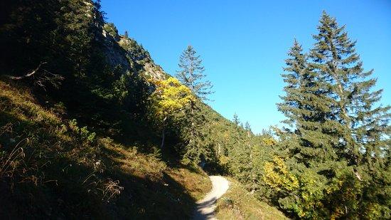 Nesselwaengle, Austria: Herbsteindrücke auf dem Meranersteig