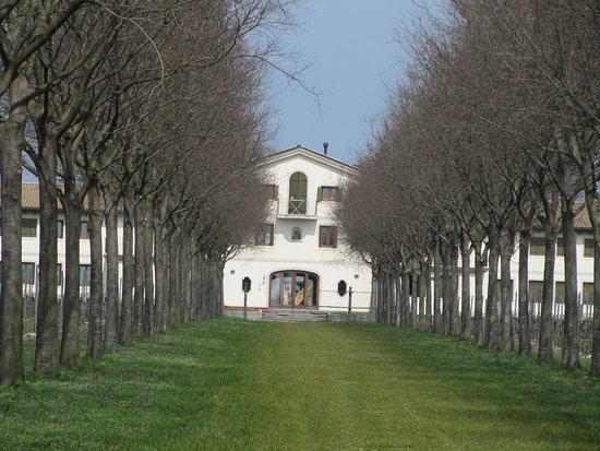 Azienda Agricola Quinta della Luna di Vettor Marco