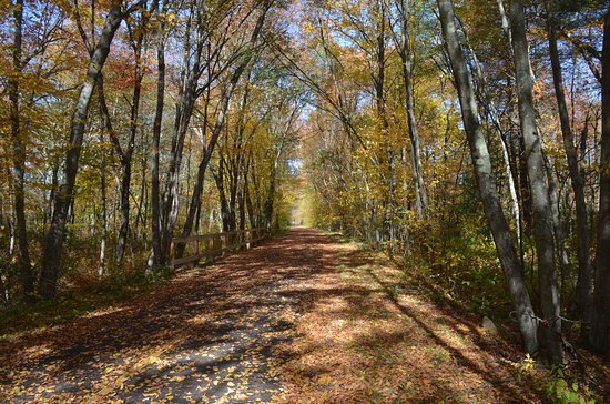 Milford, MA: October fall foliage on the trail