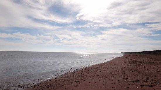 Morning walk on Stanhope Beach