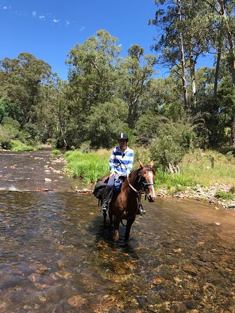 Merrijig, Australia: Tru Blu Trails caters for all age groups. Corey & Meg are a delight. Great horses,tracks,service