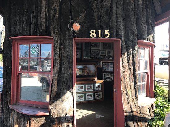 Ukiah, CA: World's Largest Redwood Station 2017