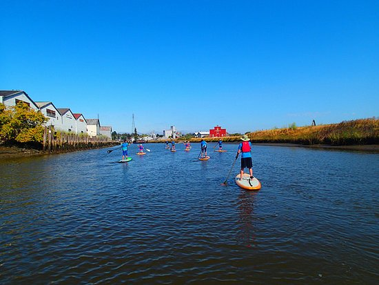 Sonoma County, Kalifornia: Paddleboarding on Petaluma River