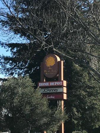 Ukiah, Kalifornien: Pear Tree Center - South 2017