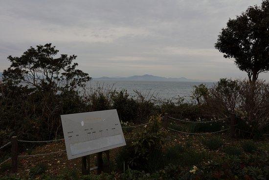 Minamata Foto