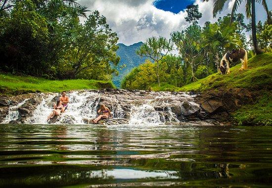 Kilauea, Hawái: Silver Falls
