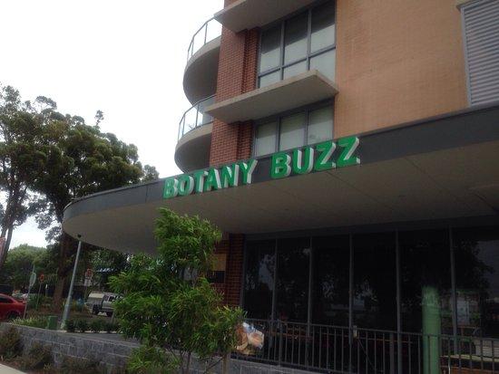 Botany Buzz