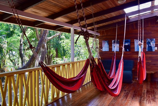 Hotel Aurora: Hammocks for junior suites.