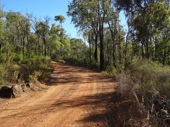 Mundaring, Australië: suit four wheel drive