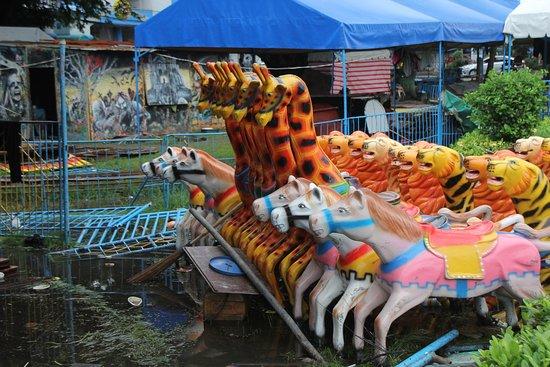 Aquino Freedom Park: Животные