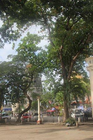 Quezon Park: Деревья. Супер