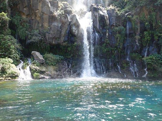 Bassin des aigrettes saint gilles les bains ce qu 39 il - Pneumologue bassin arcachon saint paul ...