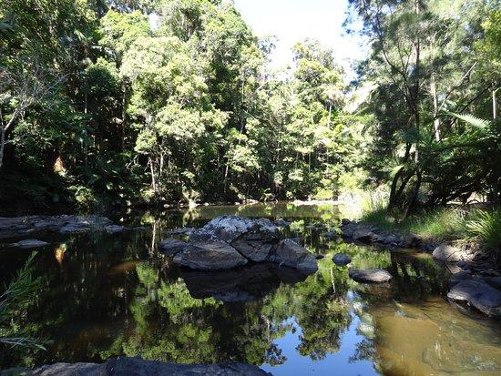 Eungella, Australia: Broken River - Hike Track
